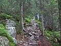 Wyjście na Łomnicę - panoramio.jpg