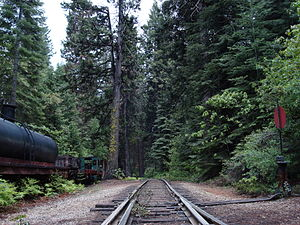 Yosemite Mountain Sugar Pine Railroad - View of the railroad's track as it winds south into thick forest cover.