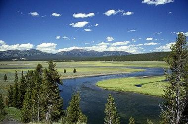 Yellowstone River in Hayden Valley.jpg