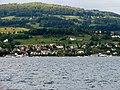 ZSG - 100-Jahre Stadt Zürich IMG 3122.jpg