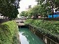 Zhongshan-green-bridge-祝萍-2.jpg