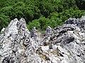 Zobor pohľad dolu - panoramio.jpg