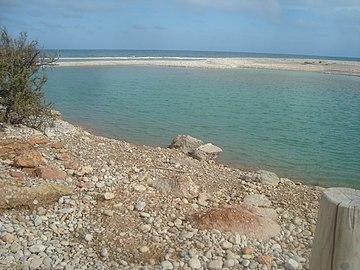 Zona húmeda de la desembocadura del río de las Cuevas o río San Miguel (Alcalà de Xivert).jpg