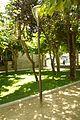 ® S.D. (ES,EN.) CUADARRAMA PARQUE DEL AYUNTAMIENTO - panoramio (1).jpg