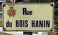 Étaples - rue du Bois-Hanin.jpg