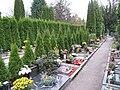 Ústřední hřbitov v Brně (7).jpg