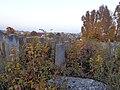 Єврейське кладовище, вул. Микулинецька (фото 3).JPG