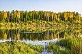 Аленушкин пруд в Рябово. Осень.jpg