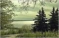 Волга - матушка - panoramio.jpg