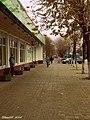 Дарожка на праспекце Кастрычнікa ... Path on October Avenue - panoramio.jpg
