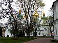 Дерева-довгожителі в Софії.jpg