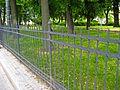 Кирочная 35, ограда сада02.jpg