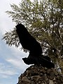 Марьино Монумент Орел (фото 7) Рыльский район 2019.jpg