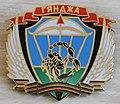 Нагрудной знак 104-й дивизии ВДВ (1989-1993).jpg