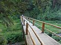 Озеро Синевир Липень 2015 4.jpg