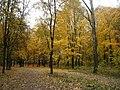 Осенью - panoramio.jpg