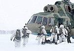 Свыше 500 военнослужащих спецназа выполнили десантирование в рамках учений в Новосибирской области.jpg