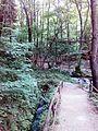 Смоларски водопад 17.jpg