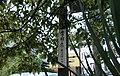 せめぎあう宗教 - panoramio.jpg