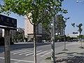 南京月安街 - panoramio (2).jpg