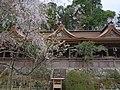 吉野水分神社にて Yoshino-Mikumari-jinja 2013.4.09 - panoramio.jpg