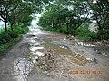 城-东南郊水毁的马路 - panoramio.jpg