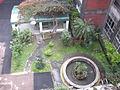 小花園與生態池.jpg