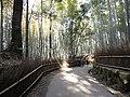 嵐山 - panoramio (11).jpg