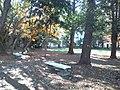 愛知大学 - 哲学の森2.jpg