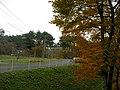 日本一の敷地面積の みやの森幼稚園 - panoramio.jpg