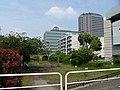 横十間川親水公園 - panoramio.jpg