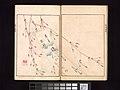 池田孤邨画 『抱一上人真蹟鏡』-Ōson (Hōitsu) Picture Album (Ōson gafu) MET DP263501.jpg