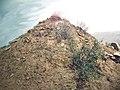 阴山墓地 - panoramio.jpg