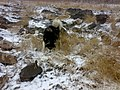 阿拉斯加 - panoramio - 即墨·布衣.jpg