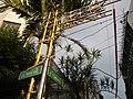01784jfGil Puyat Avenue Barangays Bridge Taft Pasay Cityfvf 15.jpg