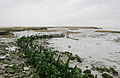 1623 seawall remains canvey island.jpg