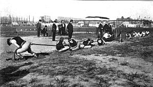 Olympic sports - Tug of war was contested at the 1904 Summer Olympics. It was later dropped from the Olympic program but remains a recognized sport.