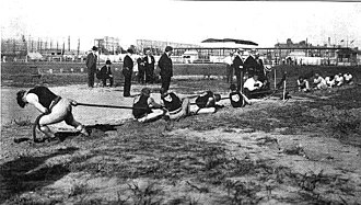 1904 Summer Olympics - A tug of war competition at the 1904 Summer Olympics