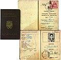 19520809 Spanisch-Ifni Reisepass.jpg