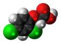 2,4-Dichlorophenoxyacetic-acid-3D-spacefill.png