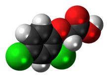 2,4-Dichlorophenoxyacetic-acid-3D-spacefill.png