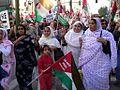 2006 Western Sahara protests in Madrid 3.jpg
