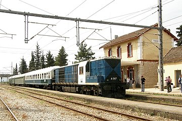 20080531-7520-Tithorea-A367.jpg
