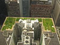 acoperișuri verzi acoperiș verde