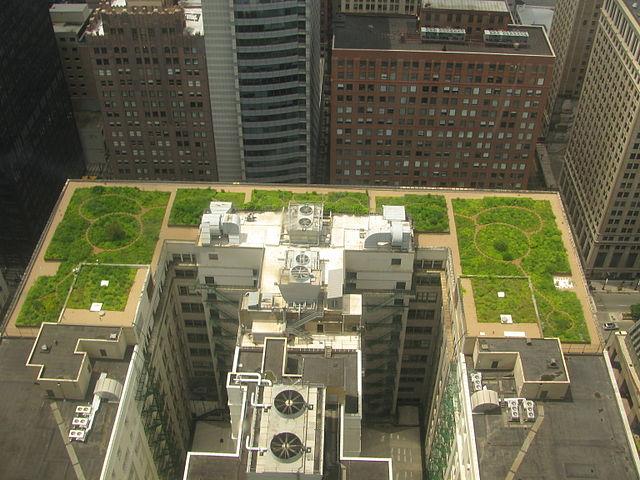 Delightful Image Credit: Chicago City Hall, Chicago BotanicGarden ...