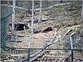2009 03 15 Veszprém 503 (51190582562).jpg