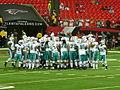 2009 Miami Dolphins.jpg