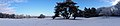 20101221 Het Drouwenerzand in de winter.jpeg