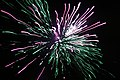 2010 07 14 bastille day fireworks 033 (4839482528).jpg