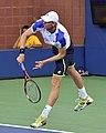 2013 US Open (Tennis) - Kevin Anderson (9647994477).jpg